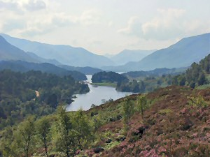 Picture of a view in Glen Affric