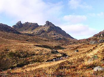 Picture of The Cobbler
