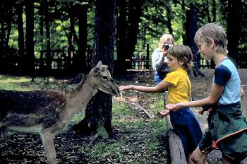 Picture of Armin and Imke feeding deer