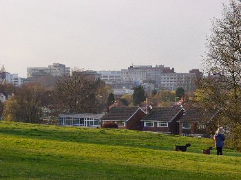 Picture of Swindon town centre from The Lawn
