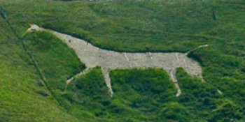 Picture of a white horse cut into a hillside
