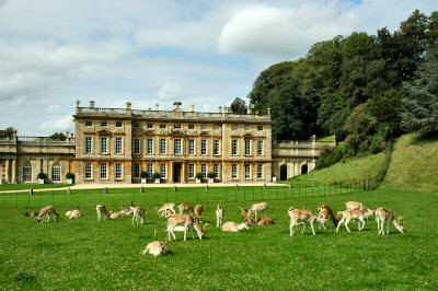 Picture of a stately home with deer grazing in front of it