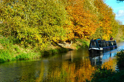 Picture of a boat on a canal, colourful autumn trees in the background
