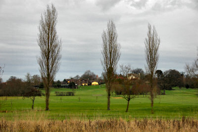 Picture of a view over a golf course