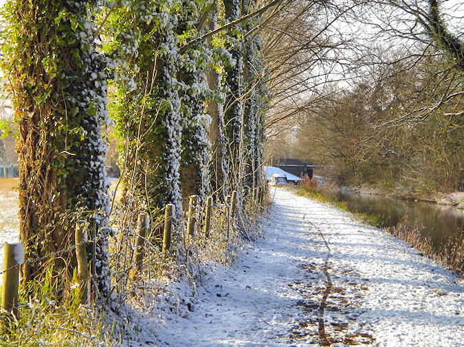 Picture of a tree lined canal towpath in the snow