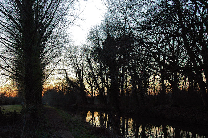 Picture of a tree lined canal in the twilight after sunset