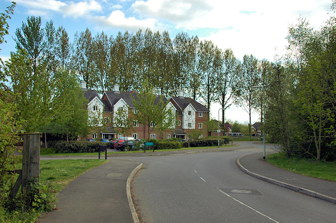 Picture of a block of flats with a line of tall Poplar trees behind it